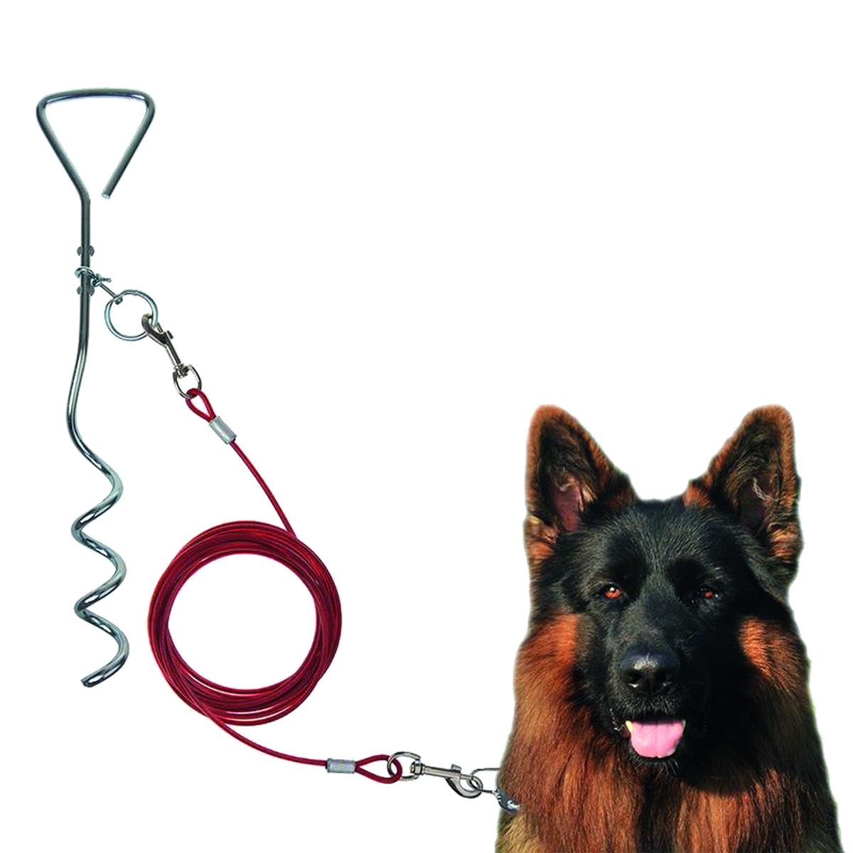 Schraub-Zeltanker mit Hundeleine
